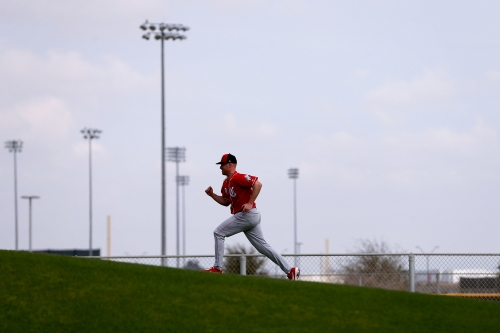 A normal offseason was a welcome change for Cincinnati Reds pitcher Anthony DeSclafani