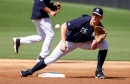 DJ LeMahieu, without a set position, viewed as one of the Yankees' regulars