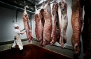 House bill would prevent 'nonmeat' from being labeled as beef