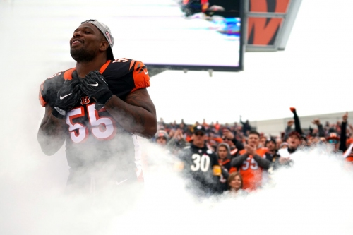 Approval Poll: The Bengals move on from Vontaze Burfict