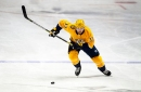 Nashville Predators Viktor Arvidsson One of NHL's Best Kept Secrets