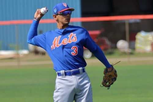 Mets Daily Prospect Report, 4/19/19