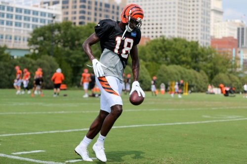 Recapping cuts and signings since Bengals rookie minicamp; updated 90-man roster