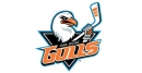 Gulls goalie Kevin Boyle shuts out Wolves on 29 shots, tying series