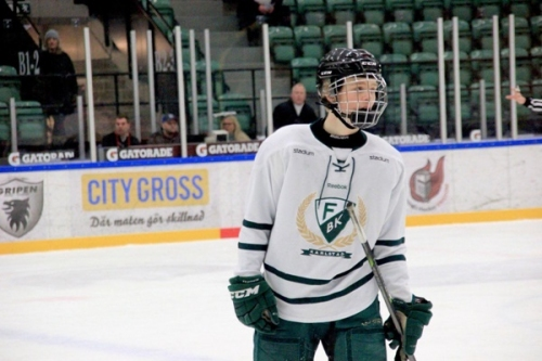 Albert Johansson Scouting Report: 2019 NHL Draft #53