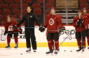 Analysis: Arizona Coyotes prospects are young, promising