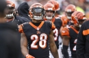 Bengals News (6/18): Joe Mixon could lead NFL in rushing