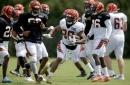 Cincinnati Bengals' Joe Mixon: You can't replace the great running backs in the NFL