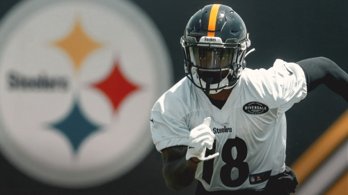 Steelers' Diontae Johnson dazzles on diving TD catch