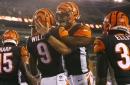 Bengals rookie report: Jake Dolegala's delightful debut