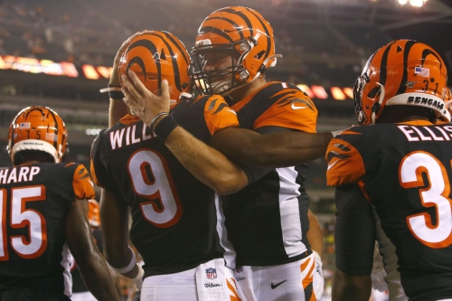 Bengals rookie report: Jake Dolegala's delightful debut