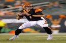 Jake Dolegala is third on the depth chart but first in Cincinnati Bengals quarterback ratings