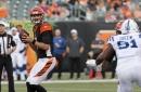 Should Jake Dolegala make the Bengals' final 53-man roster?