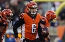 Bengals waive Jeff Driskel from IR