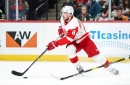 What role is feasible for Justin Abdelkader on the Detroit Red Wings now?