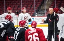 Unit-by-unit breakdown of the 2019-20 Arizona Coyotes