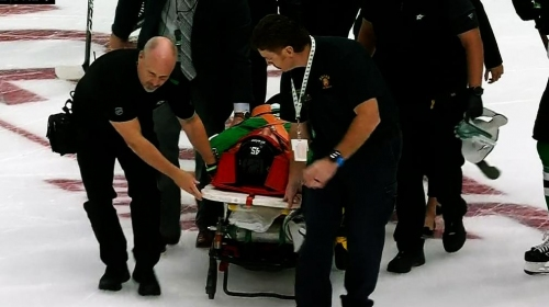 Roman Polak stretchered off after nasty fall into boards