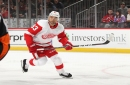 Detroit Red Wings Place Trevor Daley, Two Others, on Injured Reserve