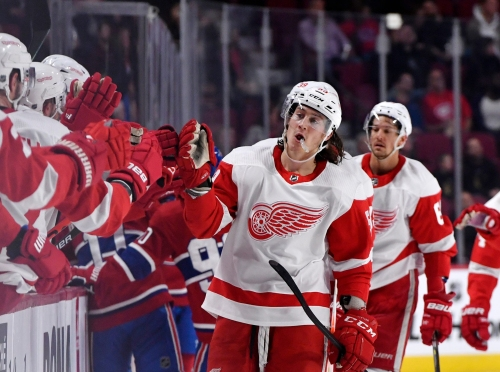 Detroit Red Wings rallying around a maturing identity: 'No panic in our game'