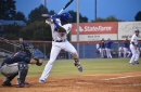The 11 best Mets minor league hitters I saw this year: 6, Jaylen Palmer