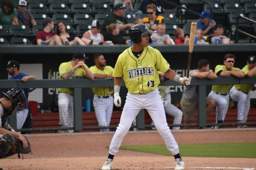 The 11 best Mets minor league hitters I saw this year: 3, Mark Vientos