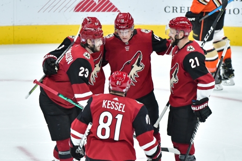 Five things you didn't know about the 2019-20 Arizona Coyotes
