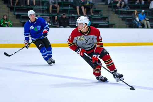 'Mr. Beauty League' Aaron Ness hopes to replicate summer success with Arizona Coyotes