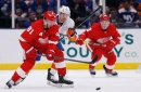 Detroit Red Wings vs. New York Islanders: Photos from the game
