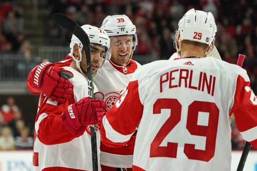 Looking for Bright Spots on the 2019-20 Detroit Red Wings