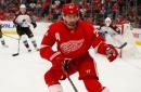 Detroit Red Wings' Dylan Larkin doing fine during NHL break; yes, he's seen 'Tiger King'