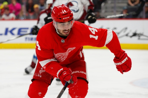 How Robby Fabbri's potential for growth can boost Detroit Red Wings