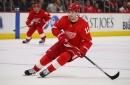 Detroit Red Wings Loan Moritz Seider and Filip Zadina Overseas