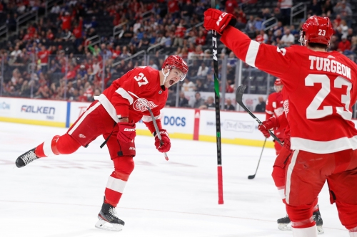 The Detroit Red Wings signed Evgeny Svechnikov for one year. Here's why