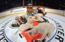 Gritty plays with puppies