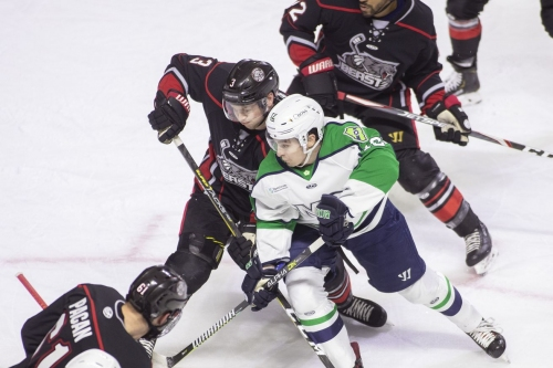 Wilderness Walk: ECHL's North Division ceasing operations this season