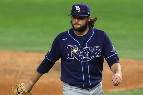 What do the Rays have in Josh Fleming?