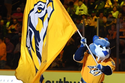 Getting to Know the New Central: Nashville Predators