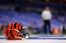 Cincinnati Bengals name Marion Hobby defensive line coach