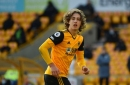 Pundit goes nuts over Fabio Silva as Wolves receive apology after row