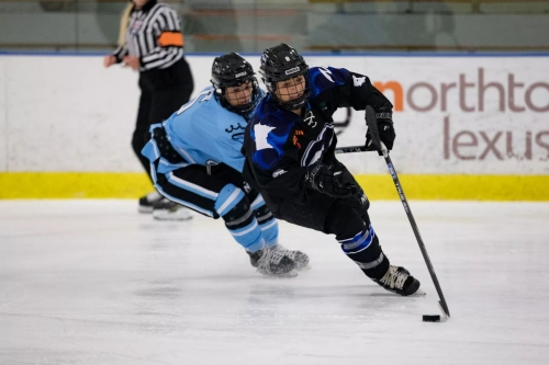 A Wild Fan's Guide to the Minnesota Whitecaps