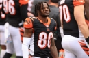 Bengals 2020 player review: Mike Thomas