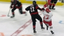 Hurricanes' Pesce fined $5K for 'dangerous trip' on Red Wings' Fabbri