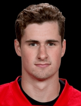 Dylan Larkin photo